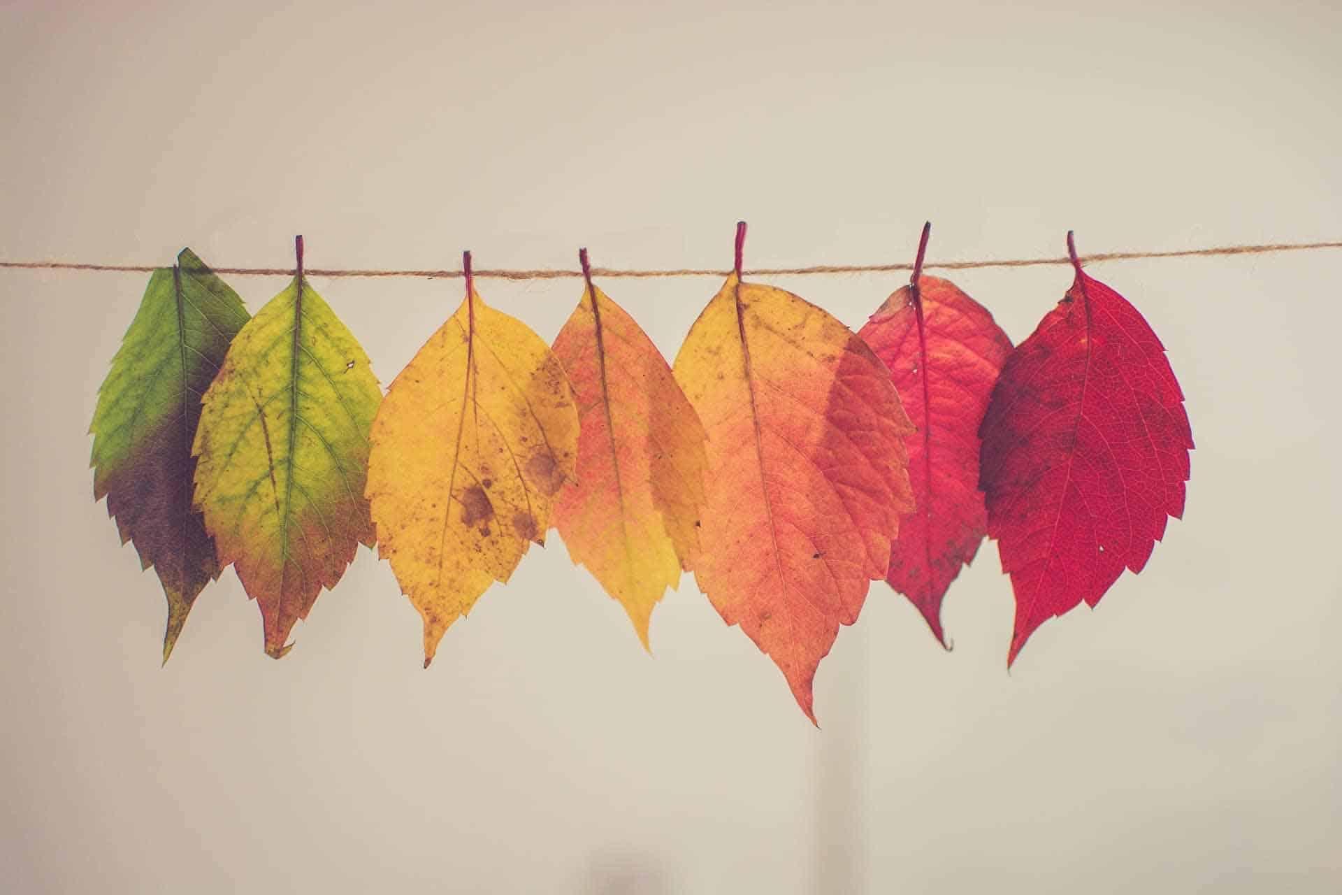 t2informatik Blog: Transformation is a constant