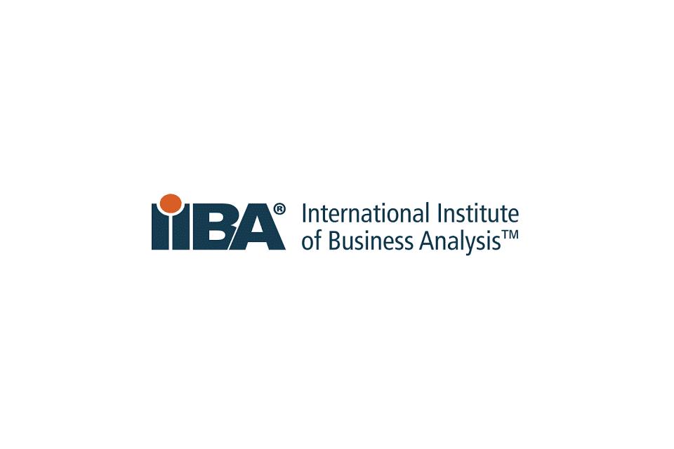 Wissen kompakt: Was macht das IIBA?