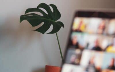 6 Prinzipien für gute Online-Workshops und -Meetings