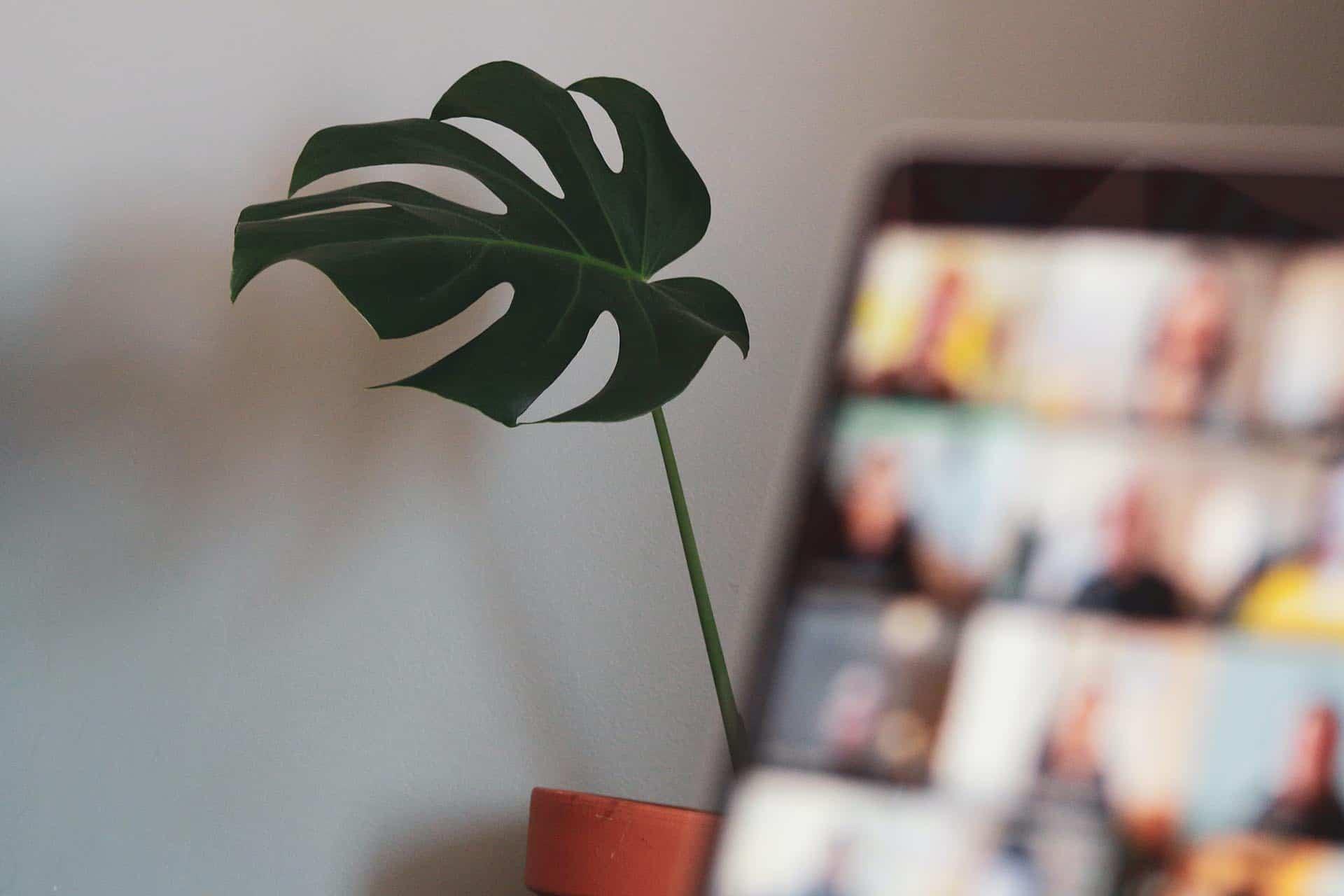 t2informatik Blog: 6 Prinzipien für gute Online-Workshops und -Meetings